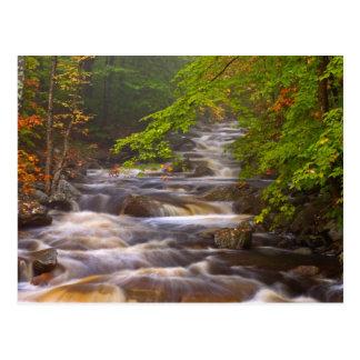 Cartão Postal Os EUA, Vermont, Arlington do leste, fluindo fluem