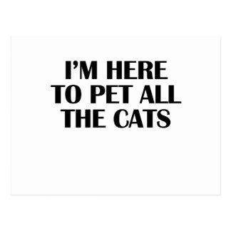 Cartão Postal os gatos