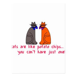 Cartão Postal Os gatos gostam de microplaquetas