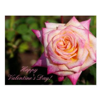 Cartão Postal Os namorados cor-de-rosa aumentaram