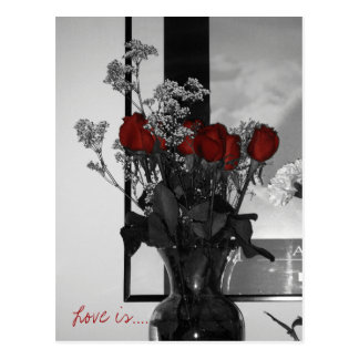 Cartão Postal Os rosas, amor são….