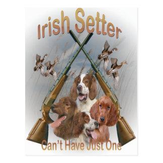 Cartão Postal Os setter irlandeses não podem ter apenas um