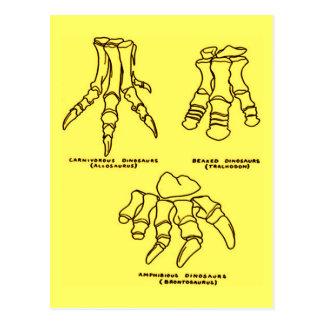 Cartão Postal Ossos de pé do dinossauro