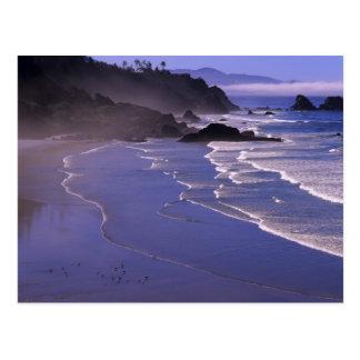 Cartão Postal OU, costa de Oregon, SP de Ecola, praia indiana