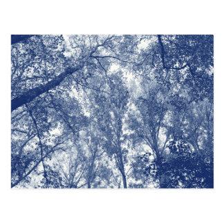 Cartão Postal Outono azul - efeito de Cyanotype