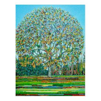 Cartão Postal Outono da árvore do arco