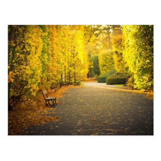 Cartão Postal Outono no parque em Gdansk, Polônia