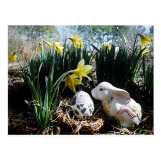 Cartão Postal Ovo branco do coelho e da vaca