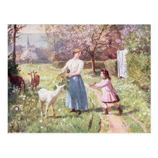 Cartão Postal Ovos da páscoa no país, 1908
