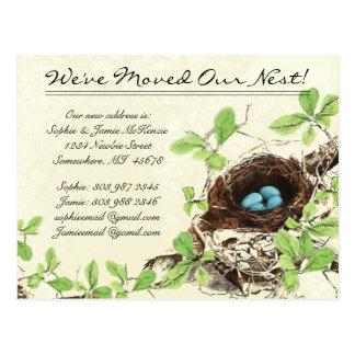 Cartão Postal Ovos que de ninho do damasco do vintage nós nos