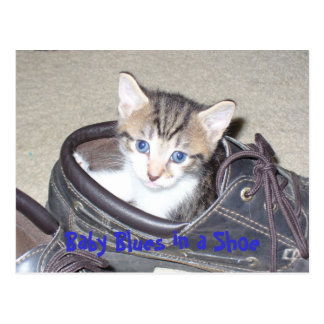 Cartão Postal P1020640_153_153, azuis de bebê em uns calçados