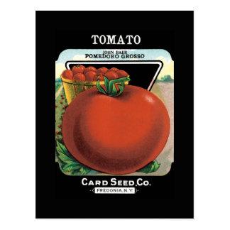 Cartão Postal Pacote da semente do tomate