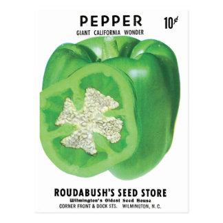 Cartão Postal Pacote verde da semente da pimenta de Bell