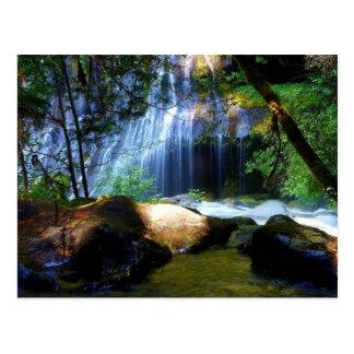 Cartão Postal Paisagem bonita da selva da cachoeira