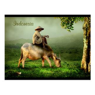 Cartão Postal Paisagem cénico de Indonésia com búfalo e