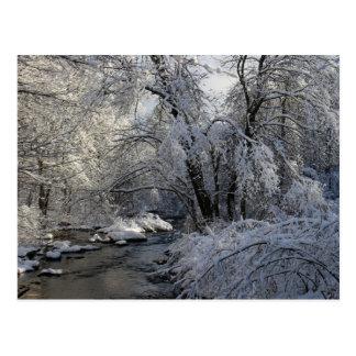 Cartão Postal Paisagem cénico do inverno