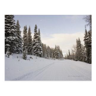 Cartão Postal Paisagem coberto de neve