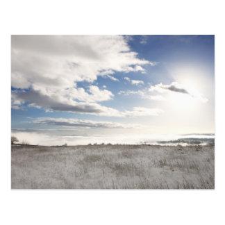 Cartão Postal paisagem do campo gramíneo coberto de neve
