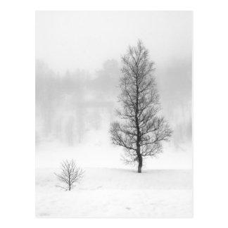 Cartão Postal Paisagem do inverno com a árvore na névoa