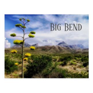 Cartão Postal Paisagem grande da curvatura, flor da planta de