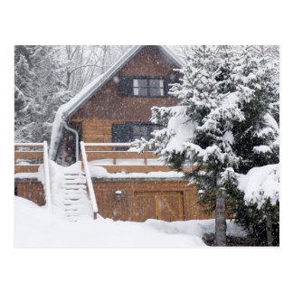Cartão Postal paisagem nevado