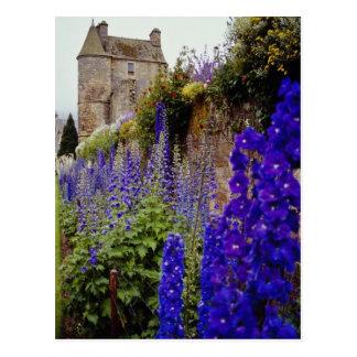 Cartão Postal Palácio de Malvinas e flores, flores de Perth