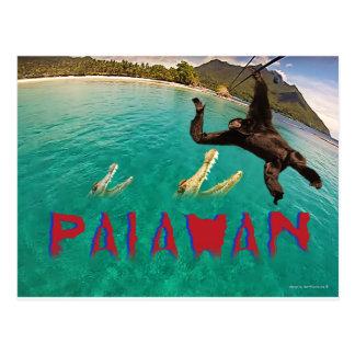 Cartão Postal Palawan, Ziplining com os macacos e os crocodilos