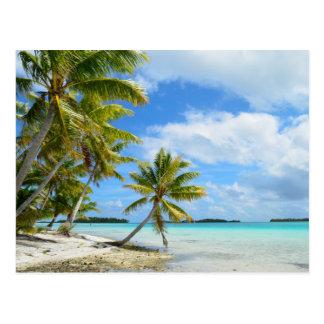 Cartão Postal Palm Beach pacífica