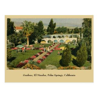 Cartão Postal Palm Springs CA do EL Mirador dos jardins