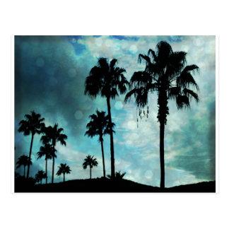 Cartão Postal palmas no crepúsculo