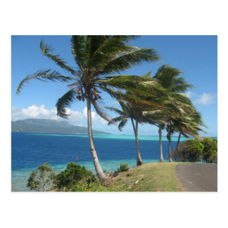Cartão Postal Palmeiras na ilha de Taha'a    Tahiti