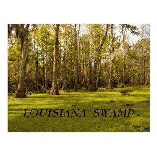 Cartão Postal Pântano de Louisiana (LA), PÂNTANO de LOUISIANA