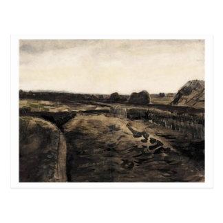 Cartão Postal Pântano de turfa, belas artes de Vincent van Gogh