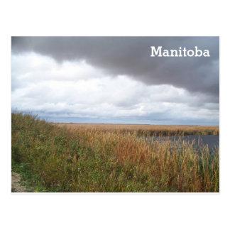 Cartão Postal Pântano do Hammock do carvalho