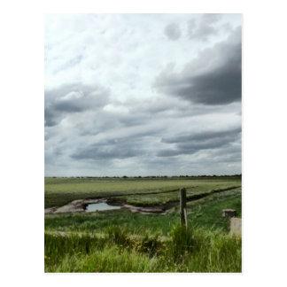 Cartão Postal Pântanos