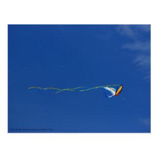 Cartão Postal Papagaio do Macaw