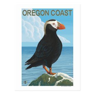 Cartão Postal Papagaio-do-mar adornado costa de Oregon