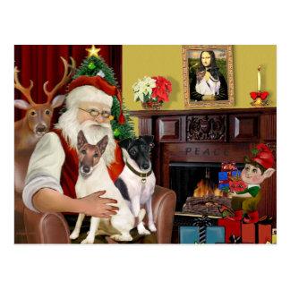 Cartão Postal Papai noel - dois terrier de Fox lisos
