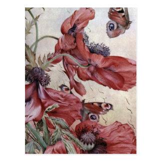 Cartão Postal Papoilas e borboletas de Edward Julius Detmold