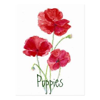 Cartão Postal Papoilas vermelhas - aguarela