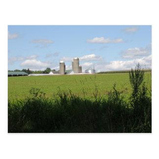 Cartão Postal Para baixo na fazenda