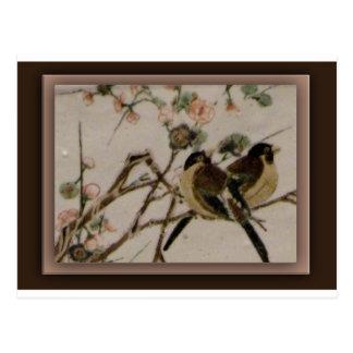 Cartão Postal Para os pássaros