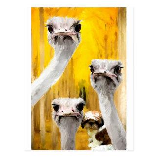 Cartão Postal para querer tem que do_Painting.jpg