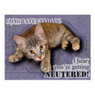 Cartão Postal Parabéns! Você está sendo neutralizado!