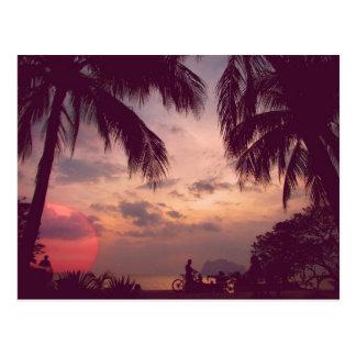 Cartão Postal Paraíso do flamingo de Costa Rica Playa encontrado