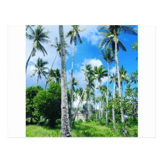 Cartão Postal Paraíso no Pacífico
