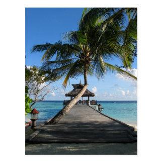 Cartão Postal Paraíso tropical - melhor 12 de dezembro de 2007