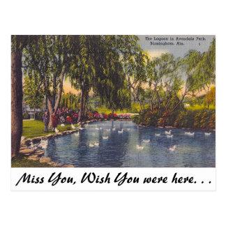 Cartão Postal Parque de Avondale, Birmingham, AL
