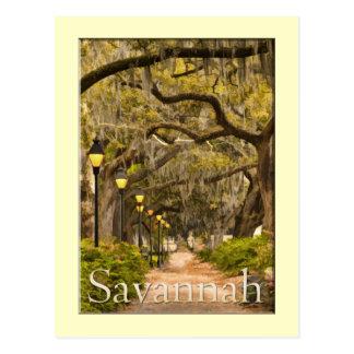 Cartão Postal Parque de Forsyth - savana, GA