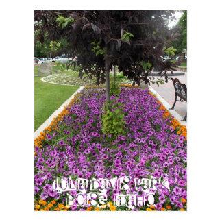 Cartão Postal Parque de Julia Davis em Boise, Idaho